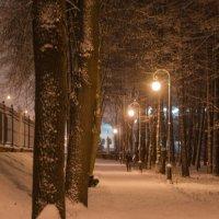 Вечер в зимнем парке..... :: Елена Фролкова