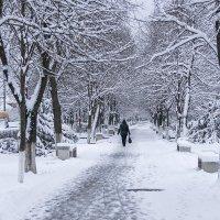 Первый день зимы :: Игорь Сикорский