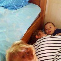 Ребята, а где я спать буду? :: liudmila drake