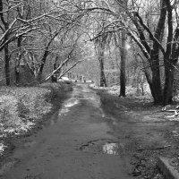 Начало зимы :: София