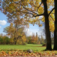 Осень в парке :: Алексей Цветков