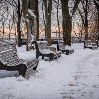 Зимний парк. :: Сергей Офицер