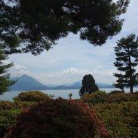 Italia, Lago Maggiore, Isola Bella :: Svetlana (Lucia) ***