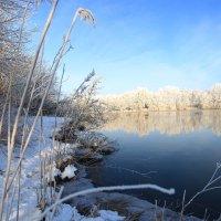 зима :: Андрей Арнольд