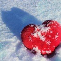 Сердце на снегу :: Виолетта Насанович