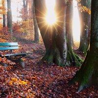 утомленное солнце :: Elena Wymann