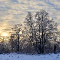 Декабрьское солнце :: Viktor Pjankov