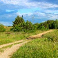 дорога в лес :: оксана
