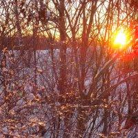 Закат в зимнюю пору :: Наталья Бычкова