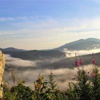 Расползлись туманы по долине :: Сергей Чиняев
