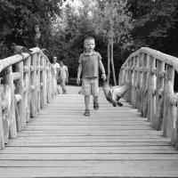 На мосту. :: Оля Богданович