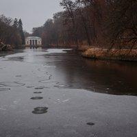 Замерзает :: Artem Zelenyuk