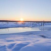 лучи по снегу заскользили :: сергей