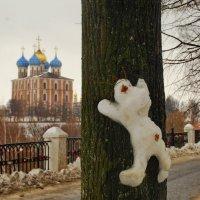 Рязанский кремль :: Валерий Толмачев