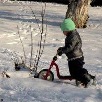 Зимние забавы :: Нина Бутко