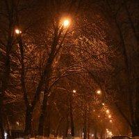 Улица . Декабрь-2 :: Андрей Хомяков