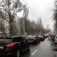 Прелести урбанизации :: Сергей Рубан