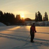 Лыжня на закате дня :: Дима Вахрушев
