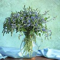 А когда придет пора цветения пусть они тебе напомнят обо мне. :: alfina