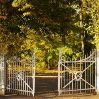 Ворота в Золотую осень... :: Sergey Gordoff