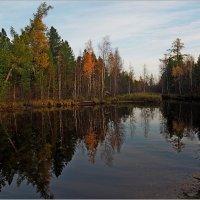 Северная зарисовка :: Аркадий Иваковский