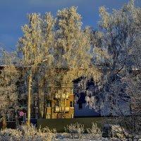 Зимой, даже в городских кварталах, может быть сказка... :: Владимир Ильич Батарин