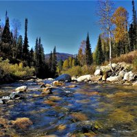 Горная река Шатай :: Сергей Чиняев