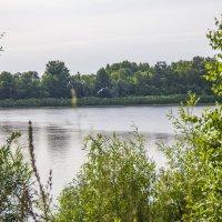 река Ока :: Надежда Чернышева