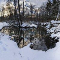 Рассвет в зимнем лесу :: Dmitriy Martynenko