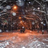 Зима бродит по земле... :: *MIRA* **