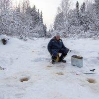 Увлекательное занятие  эта зимняя рыбная ловля... :: Сергей