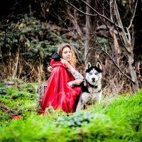 Девушка и волк :: Марина Алексеева