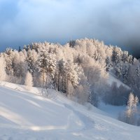 Алтай в декабре. :: Ольга