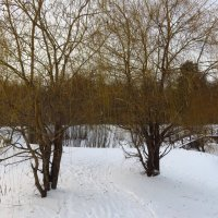 Настоящая зима :: Андрей Лукьянов