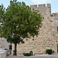 Иерусалим,стены старого города :: Владимир Брагилевский
