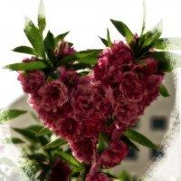 Цветок :: Alexander Dementev