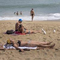На пляже Нячанга. :: Виктор Куприянов