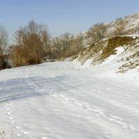 В январе :: Игорь Сикорский