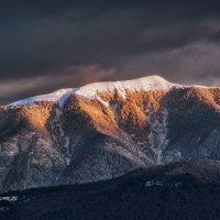 Первый снег... :: Александр Криулин