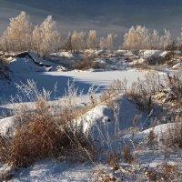 Постепенно земля покрывается снегом... :: Александр Попов