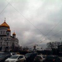 *** :: Julia Volkova