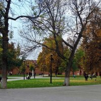 Прогулка по парку :: ivolga