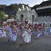 Процессия в Канди. Цейлон. Procession in Kandy. Ceylon. :: Юрий Воронов