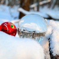 Волшебство зимы.. :: Андрей Заломленков