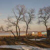 набережная амурского залива.. :: Надежда Шемякина