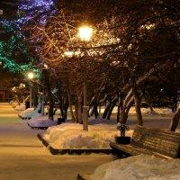 Зима в Сибири наступает рано. Новосибирск. Ноябрь. :: Наталья Казанцева