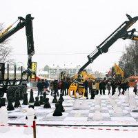Атакующий ход белых. :: Николай Карандашев