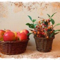 Яблоки и ягодки :: Nina Yudicheva