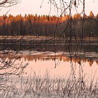 декабрьский маятник :: liudmila drake