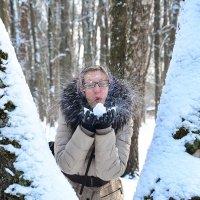 Зимний этюд. :: Paparazzi